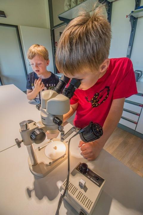 Tag der jungen Forscher