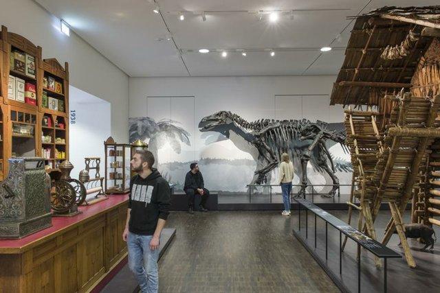 Übersee Museum Blick in die Ausstellung
