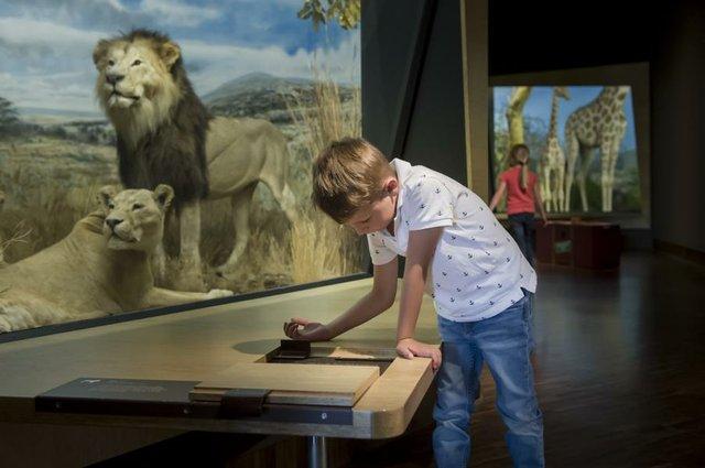 Fest der Forscher Übersee-Museum Bremen