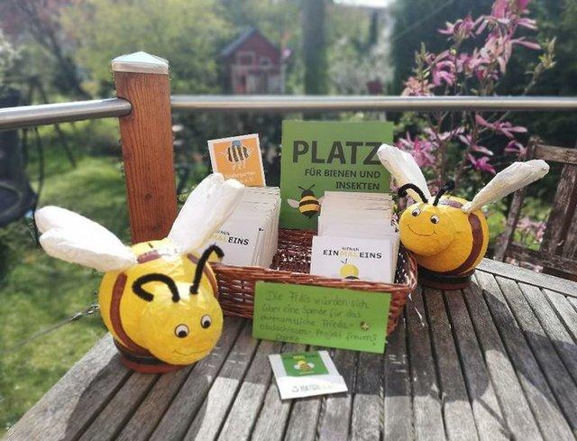 Mehr Bienenwiesen für Bremen