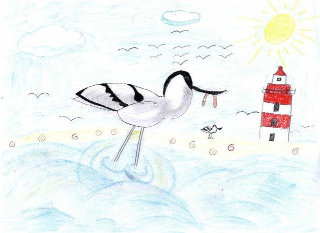 Kinderaktion Malwettbeerb Zugvogeltage