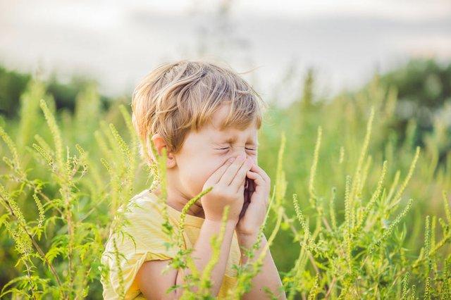 Allergien, Heuschnupfen, Pollen, Kinder und Eltern