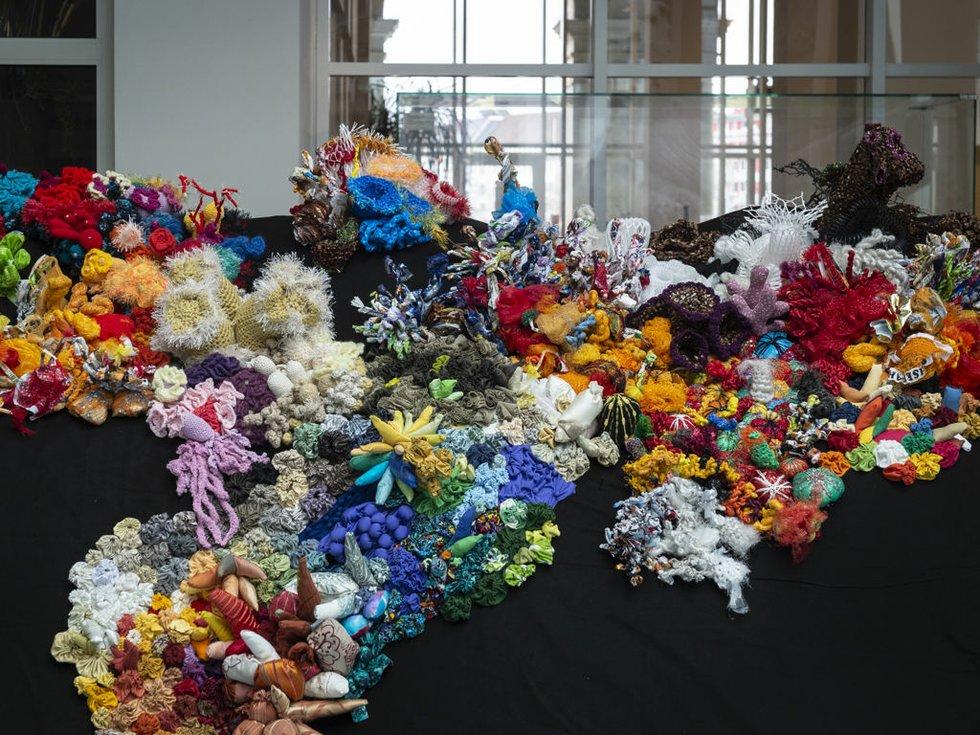Korallengarten - ein Upcycling-Riff entsteht