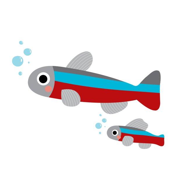 Haustier, Fische