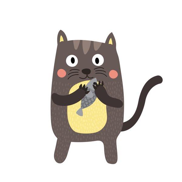 Haustier, Katze