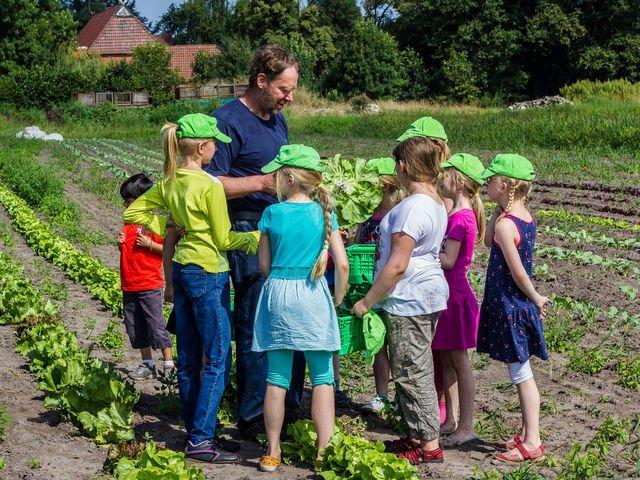 Sommerferien auf dem Bauernhof