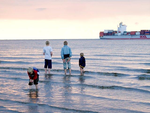 Watt'n Watt! Naturerlebnisse an der Nordsee