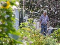 Huchtinger Hügelgarten, Urban Gardening