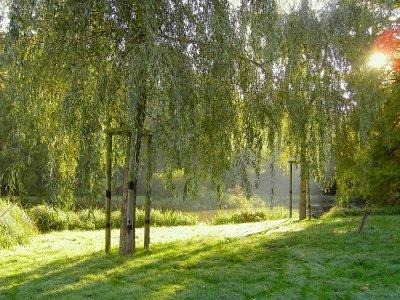 Stadt - Land - Fluss: Familienausflüge in Bremen und umzu