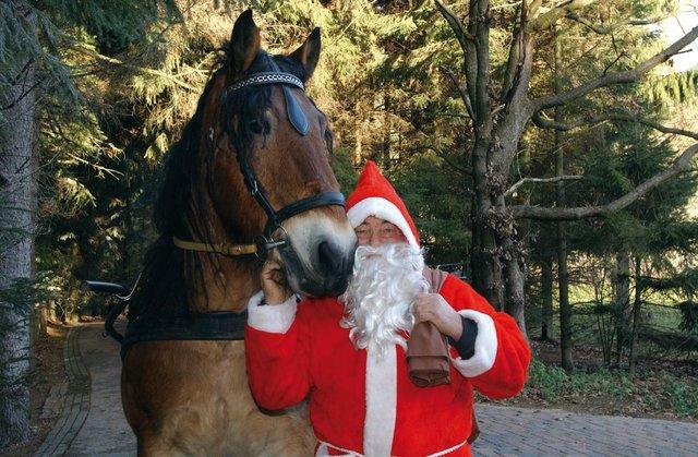 Mit dem Nikolaus auf Futtertour, Wildpark Schwarze Berge
