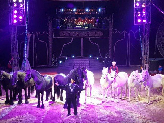 Circus Voyage