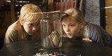 Hilfe__unser_Lehrer_ist_ein_Frosch_Filmstills_14_Foto_Little Dream Entertainment.jpg