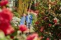 botanika_Japangarten_Jungs_MM_4514_web.jpg