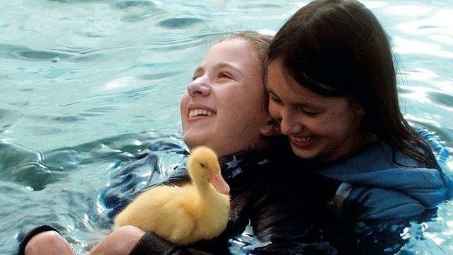 Zugvögel – Wenn Freundschaft Flügel verleiht
