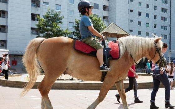 Pferde- und Kinderstärke