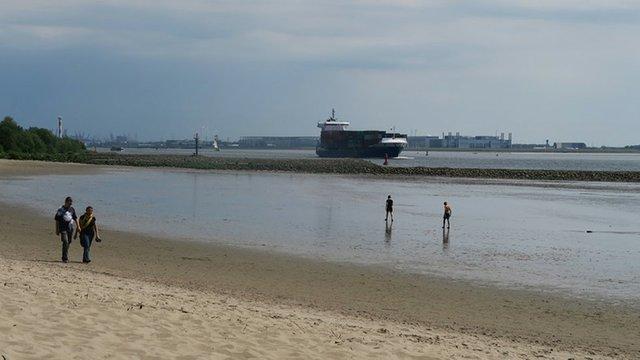 Elbe Strand Containerschiff