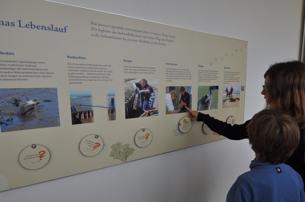Seehundstation Infotafel