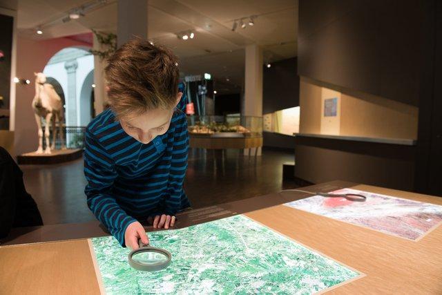 Entdecker in Afrika (Übersee-Museum Bremen)