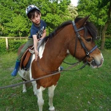Ponyspielgruppe