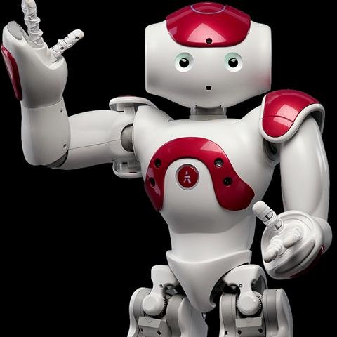 Roboter Elly