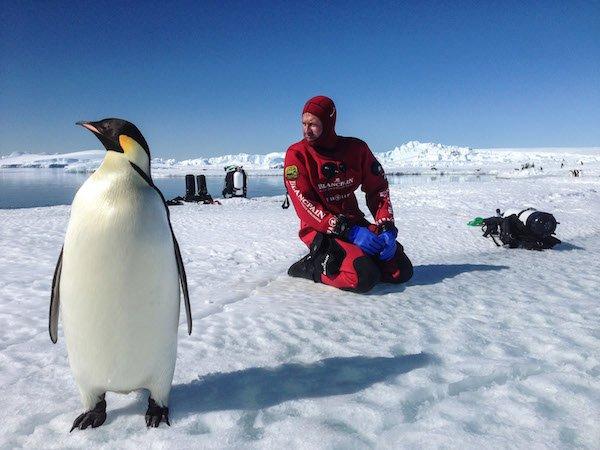 Antarctica_Fotograf_Laurent_Ballesta_mit_einem_Kaiserpinguin__c_Ce__dric_Gentil.jpg